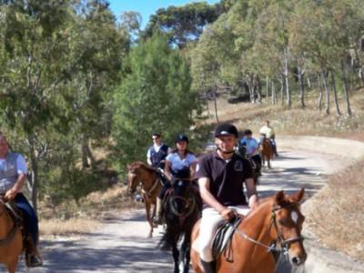 escursione sul cavallo, vesuvio, parco nazionale del vesuvio